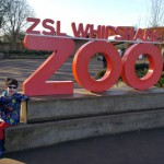 Lions & Tigers & Giraffes, oh my! Our day at ZSL Whipsnade Zoo