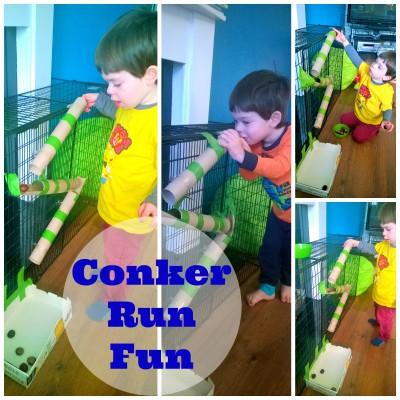 Conker run marble run fun