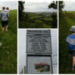 Mummy's Crazy Countryside Adventures