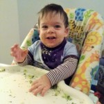 Purees vs Baby Led Weaning