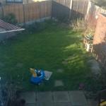 Operation Garden Renovation