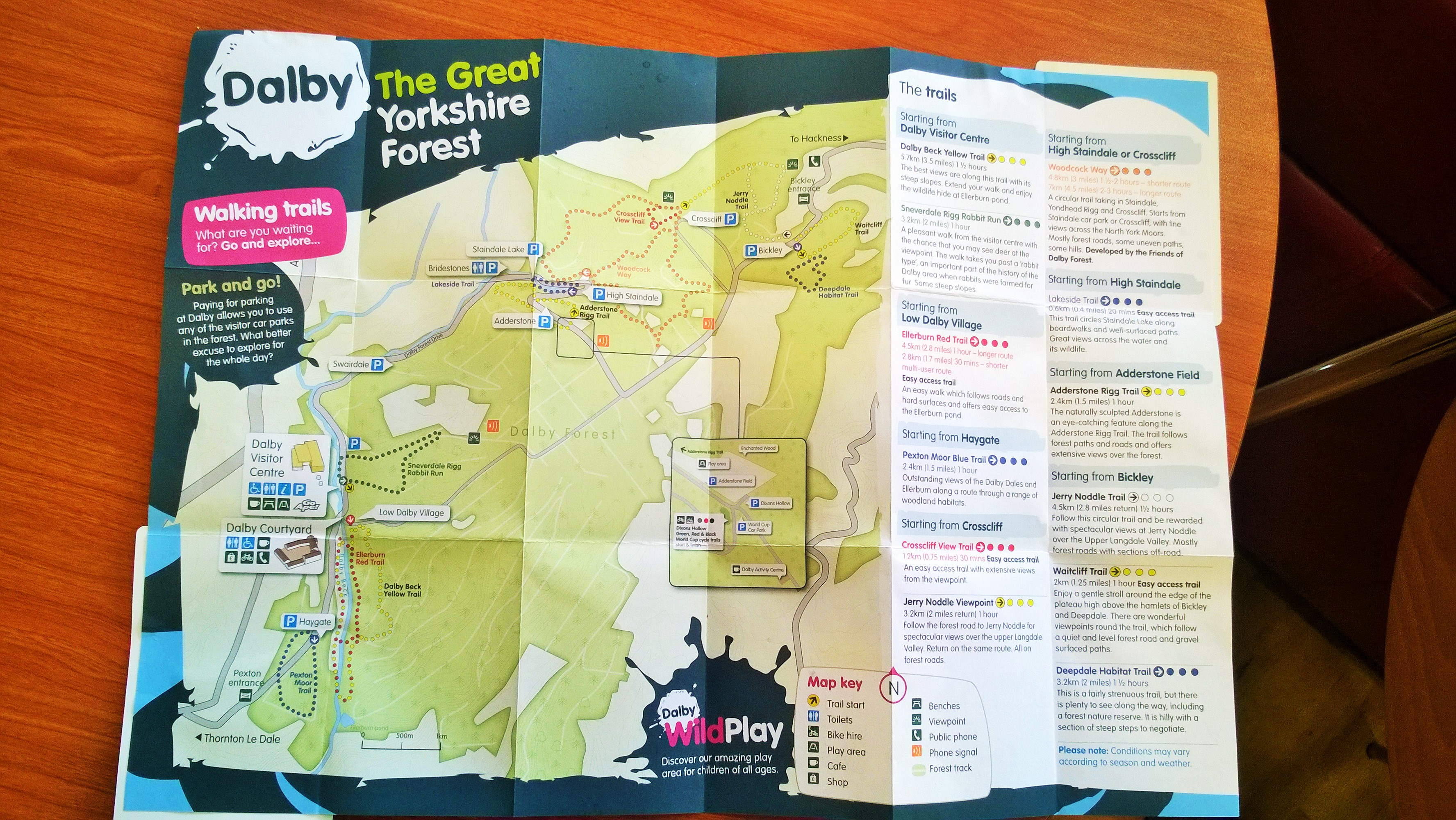 Dalby Forest Yorkshire  Becoming a Stay at Home Mum