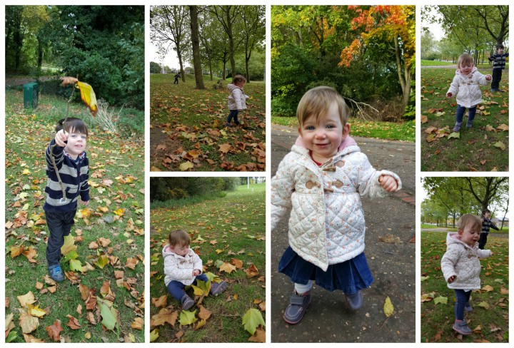 autumn walks