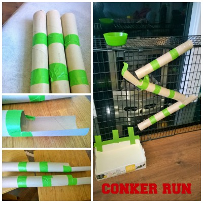 homemade conker run marble run