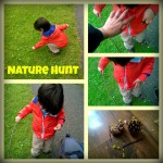 Impromptu Nature Hunt